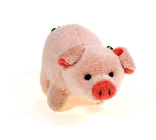 Glücksschweinchen - mit Modul