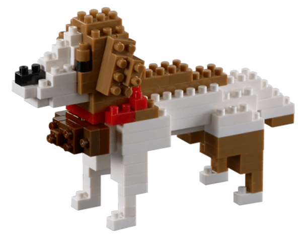 Brixies Bernhardiner Hund