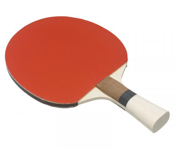 Günstiger Tischtennisschläger - Allround