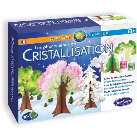 Die Phänomene der Kristallisation