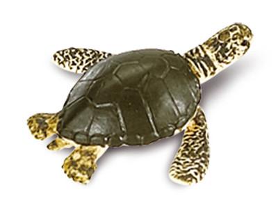 Glücksbringer Mini Wasser-Schildkröte