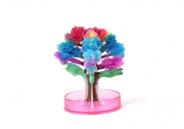 41273_Magic_Tree1_21585_3836x2684.jpg